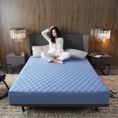 (总)丽芙2021新款超声波夹棉磨毛防水床笠(抗菌防螨)—素色 150cmx200cm 淡雅蓝