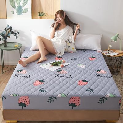 (总)丽芙2021新款超声波夹棉磨毛防水床笠(抗菌防螨)—印花 150cmx200cm 小草莓