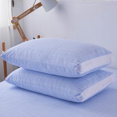 (总)丽芙2021新款立体防水枕套(A类,抗菌防螨) 48cmX74cm/对 浅蓝