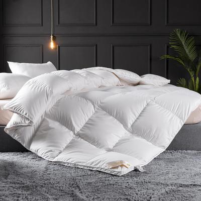 2019新款立体平网加厚羽绒被子被芯 150x200cm  6斤 白色