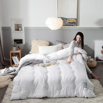 2018去年产品水洗棉羽丝绵保暖冬被 150x200cm5斤 摩登天空-纯白色