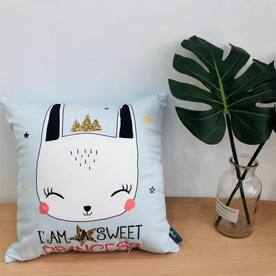 新款可爱兔抱枕 45x45cm 可爱兔2