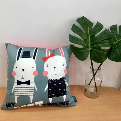 新款兔子抱枕 45x45cm 兔子1