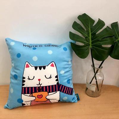 新款幸福猫抱枕 45x45cm 幸福猫2