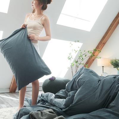 2019新款-北欧无印良品天鹅绒单品枕套 48cmX74cm/对 雾蓝色(4号)