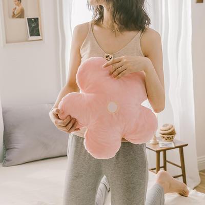 2019新款梦想的小花-抱枕 50X50cm含芯/个 嫩粉