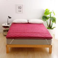 2018新款-珊瑚绒竹炭加厚款床垫 90*200cm 酒红