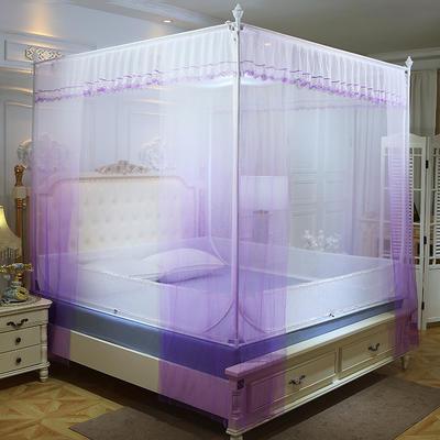 2019新款坐床蚊帐-曼舞 1.5m(5英尺)床 紫色