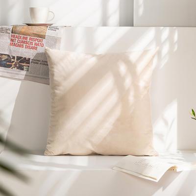柠栀家纺 丽丝绒抱枕 方枕 腰枕 40x40cm(抱枕套不含芯) 奶白色