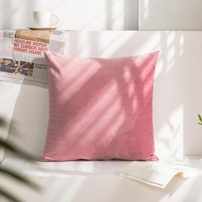 柠栀家纺 丽丝绒抱枕 方枕 腰枕 40x40cm(抱枕套不含芯) 少女粉