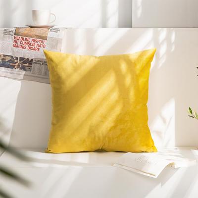 柠栀家纺 丽丝绒抱枕 方枕 腰枕 40x40cm(抱枕套不含芯) 活力黄