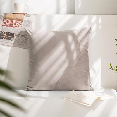 柠栀家纺 丽丝绒抱枕 方枕 腰枕 40x40cm(抱枕套不含芯) 浅灰