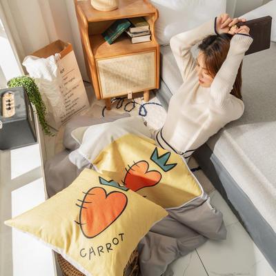 柠栀家纺 高克重数码印花抱枕被 40X40cm(打开110x140cm) 抱枕被-萝卜