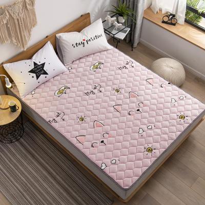 2019新款 牛奶絨床墊 防滑床褥可機洗褥子 冬季保暖床護墊爬爬墊 0.9*2米 貓咪