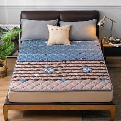 2020新品 親膚磨毛床墊可機洗床褥子特價床護墊席夢思保護墊 0.9*2.0m 暢想
