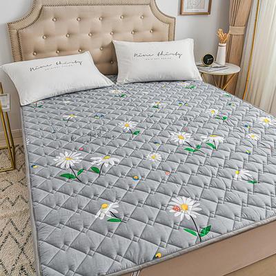 2020新品 全棉可机洗床垫 榻榻米防滑床褥子四季床护垫 薄垫被 0.9*2m 蜜糖布丁
