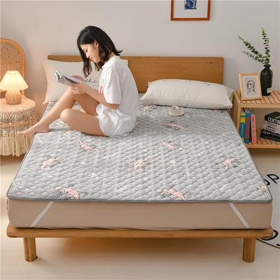 2020新款梅花法莱绒床褥床垫 1.0*2.0m 小壁虎
