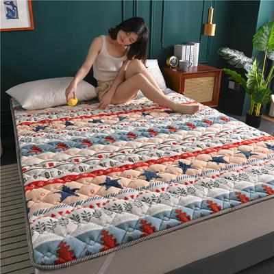 2020新款毛巾绒防滑保暖垫床褥-毛巾绒床垫 1.2*2.0m 波西米亚