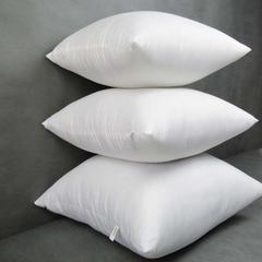 兴丝露枕芯 抱枕芯靠垫芯55x55cm网销赠品 抱枕芯55x55cm