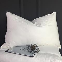 2018新款仙娥素色羽绒丝枕48*74cm 白