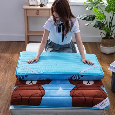 2019新款学生宝宝绒卡通床垫 学生床垫包装(桶形)/只 熊熊(9cm)