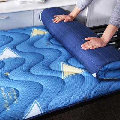 2019新款6月学生款5D印花透气床垫(直包) 90*200 蔚蓝