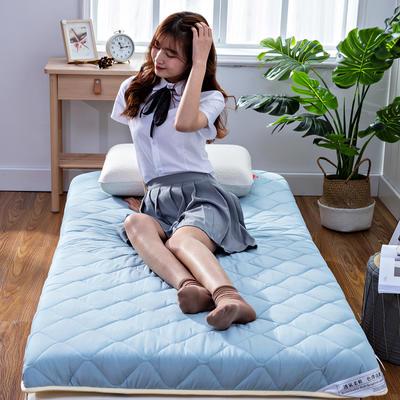 2019新款学生素色水洗棉床垫 90*200 浅蓝(6cm)