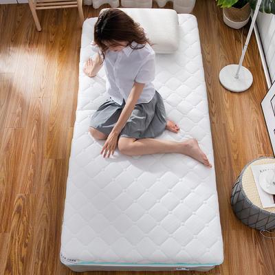 2019新款学生针织双面抗菌床垫 90*200 水绿(6cm)