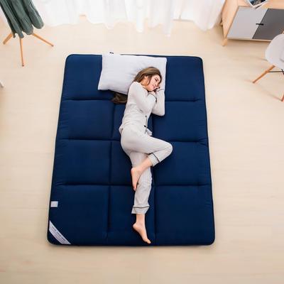 促销之二:2019法莱绒床垫-新款四季亲肤床垫 90*195 深蓝