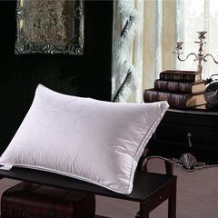 2018新款-提花 60 80双层枕头枕芯 白色48*74cm