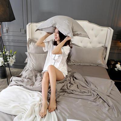 2019新款水洗真丝四件套 1.5m(5英尺)床(床笠款) 深银灰