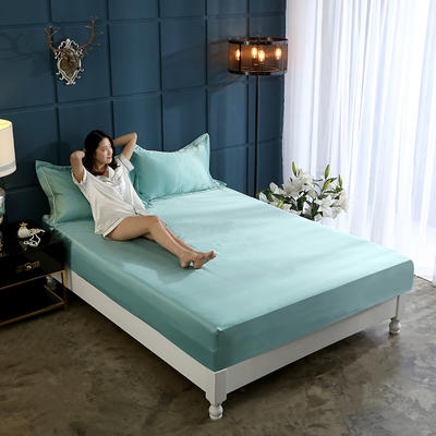 新款水洗真丝透气床笠水洗天丝床笠床罩单件隔尿透气床垫防尘罩席梦思保护套 180cmx200cm 优雅绿