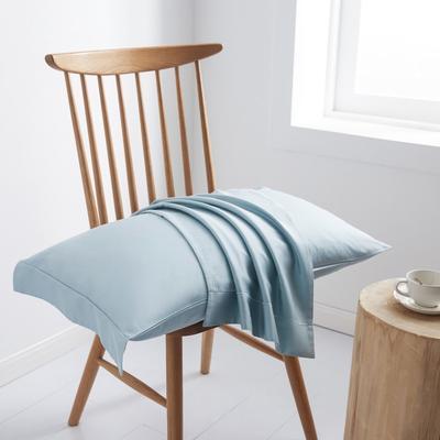 2019新款60S长绒棉舞彩单品枕套 枕套/对 北极兰