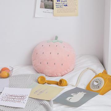 2019新款清新水果刺绣抱枕