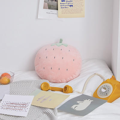 2020新款清新水果刺绣抱枕 45x40cm 草莓