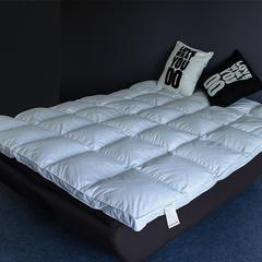 2018新款-韩版床垫羽绒床垫鹅绒床垫鹅毛片床垫羽绒被羽绒枕 120x200 白色