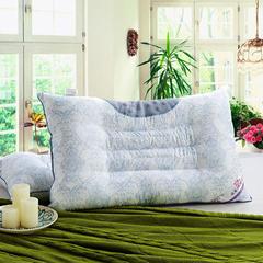 OLYI 家纺枕头芯荞麦对装枕双排磁石决明子枕 磁石决明子枕