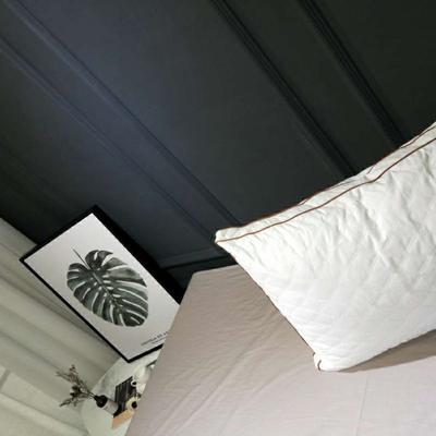 2018新款-成人枕芯(酒店羽丝绒枕48*74cm) 酒店羽丝绒枕//个