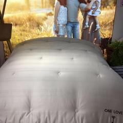 全棉贡缎小提花被芯面料 宽幅250cm 1
