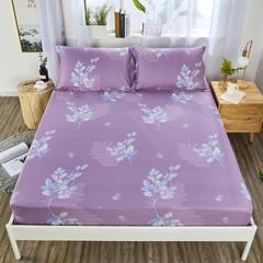 2020新款纯棉床笠单品 150*200+30cm 挪威森林