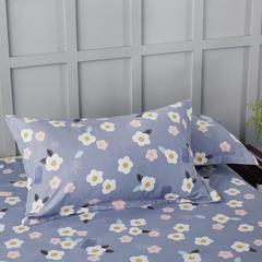 2020新款全棉印花单品枕套 48cmX74cm/对 花田物语-灰