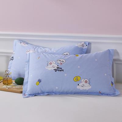 2020新款全棉印花单品枕套 48cmX74cm/对 梦幻童年-蓝