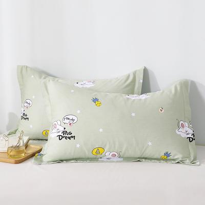 2020新款全棉印花单品枕套 48cmX74cm/对 梦幻童年-绿