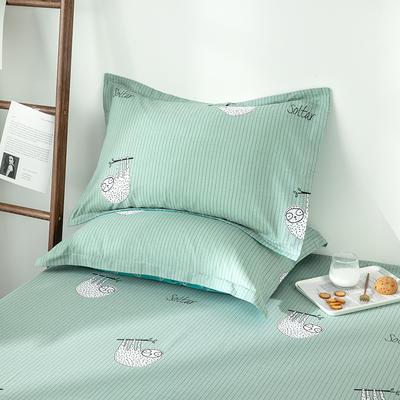 2020新款全棉印花单品枕套 48cmX74cm/对 绿野仙踪