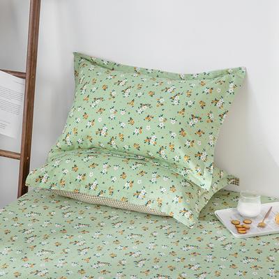 2020新款全棉印花单品枕套 48cmX74cm/对 薇香-绿