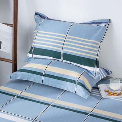 2020新款全棉印花单品枕套 48cmX74cm/对 休闲时光-蓝