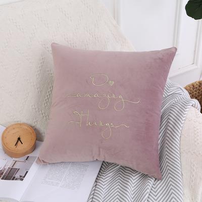 可温家居 2018年新款 纯色意大利绒刺绣抱枕 沙发装饰枕 45X45cm(光枕套) 酱紫粉