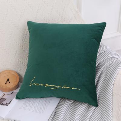 可温家居 2018年新款 纯色意大利绒刺绣抱枕 沙发装饰枕 45X45cm(光枕套) 墨绿色