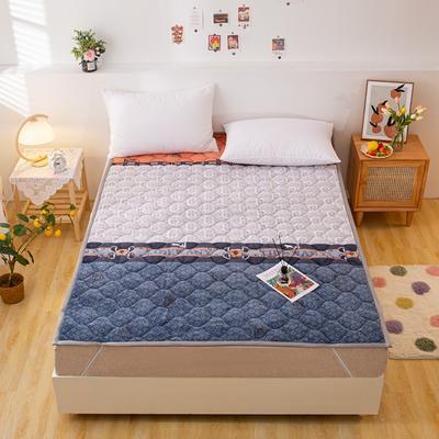 2021可定做加厚牛奶绒夹棉床垫 防滑床褥可机洗褥子冬季保暖床护垫爬爬垫 120*200cm 直角包边-北欧风情