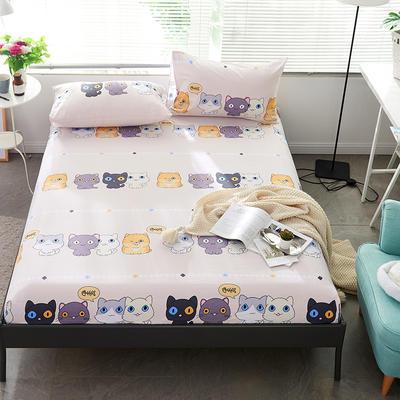 2019新款-全棉13372小清新风床笠款三件套 0.9m床 二件套 小奶猫